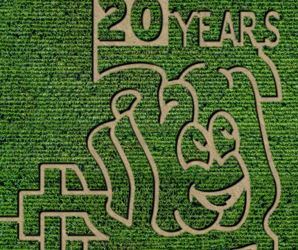Spookley Corn Maze