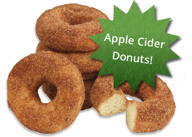 Fresh Apple Cider Donuts
